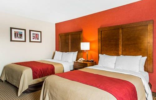 Comfort Inn Boston bedroom